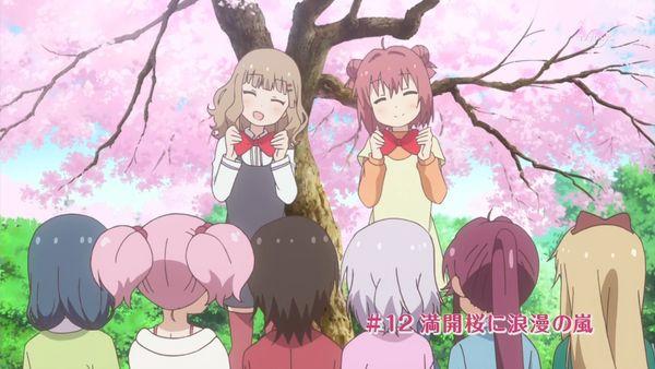 『ゆるゆり さん☆ハイ!』第12話「満開桜に浪漫の嵐」【アニメ感想】_22854